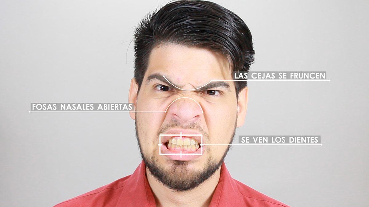 Expresión facial de la agresividad